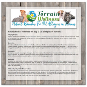infographic of herbal remedies for pet allergies in humans