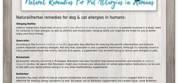 How to get rid of cat allergies naturally