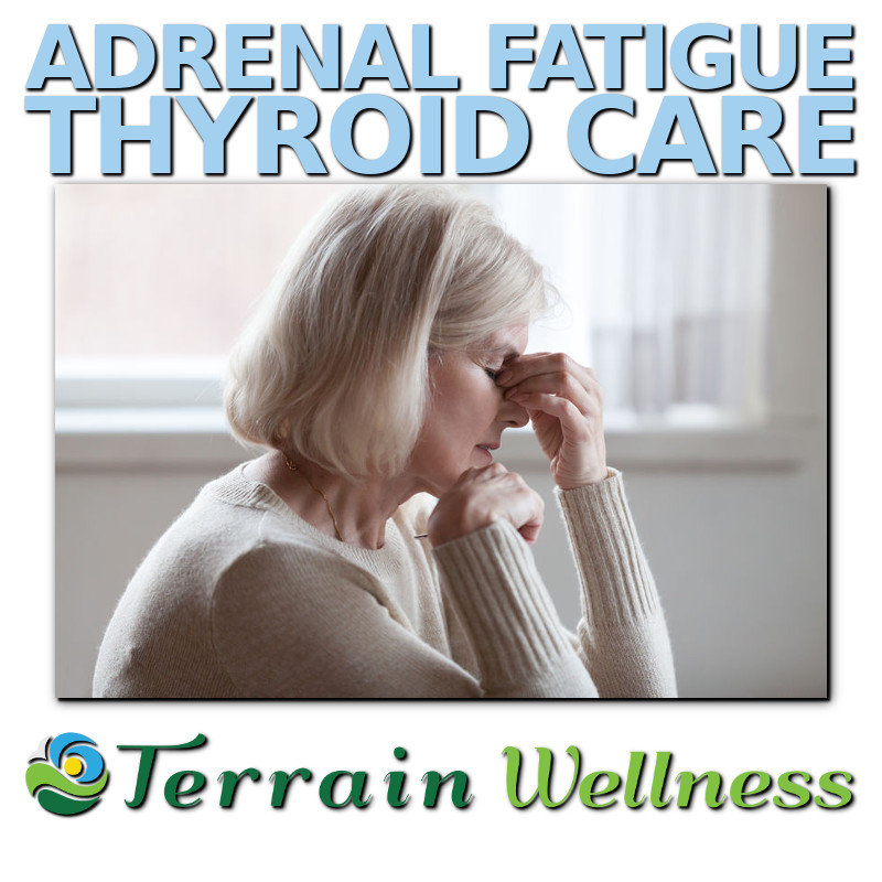 Adrenal Fatigue and Thyroid Care