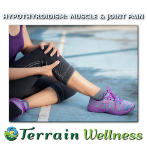 thyroid muscle and joint pain