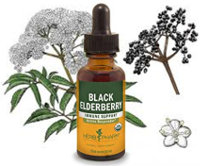 Black Elderberry Extract: Natural Cold & Flu Treatment.