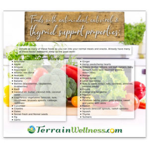 Infographic of foods that may help support the thyroid and promote endocrine function.
