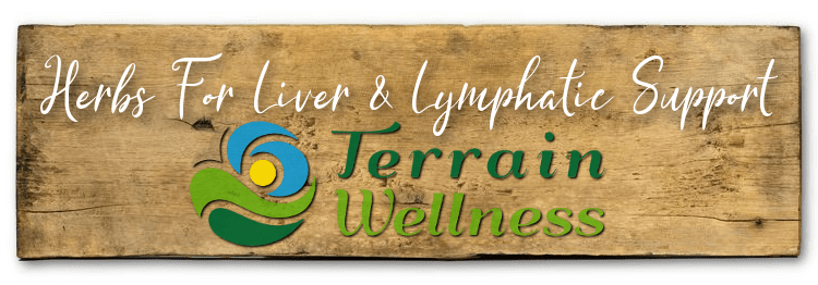 Herbs For Liver & Lymphatic Support