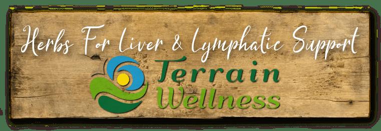 Herbs for liver: Burdock Root, Lemon Balm, Turmeric