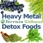 heavy metal detox foods