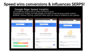 Google Page Speed Insights  measures site performane=ce