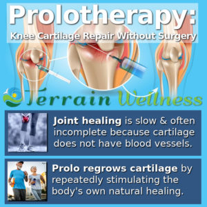 prolotherapy: knee cartilage repair without surgery