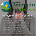 Euthyroid Sick Syndrome, clinically euthyroid. infographic explaining the condition