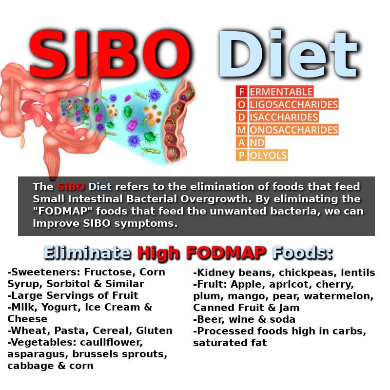 SIBO Diet Infographic