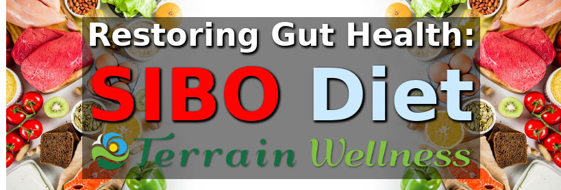 SIBO diet, gut health specialists