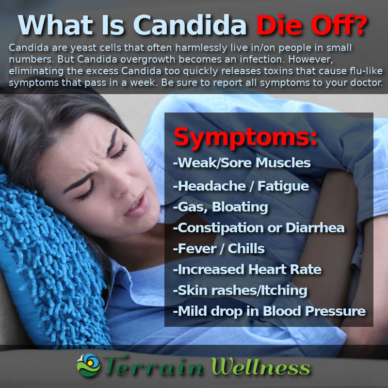 infographic definition of candida die off symptoms